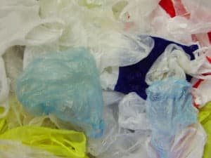 A Threat To Nature: Polythene Bags