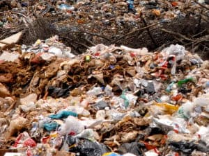 Plastic Waste: What Are The Hazards?